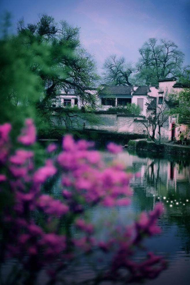 每个人心中都有一种古镇情怀,流水江南