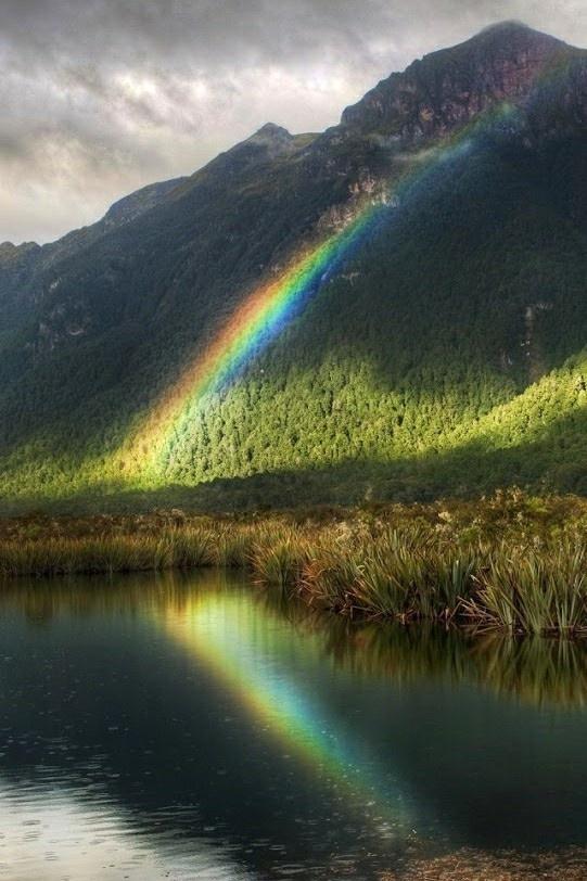 都说看见彩虹就代表着会有好事发生