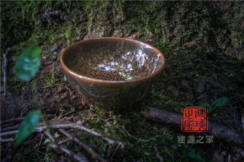 为什么越来越多人爱用建盏泡茶