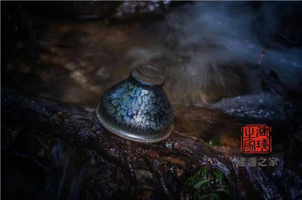 今生的水遇到前世的茶,氤氲出味道这缘分