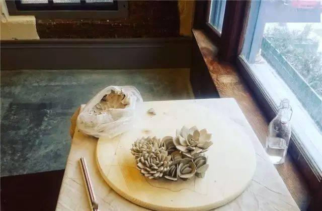 陶艺家Owen Mann丨永不凋零的陶瓷多肉