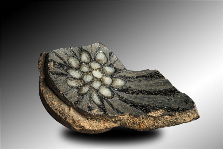 形似白莲花颇有意趣底足刻供御的珍珠斑瓷片标本