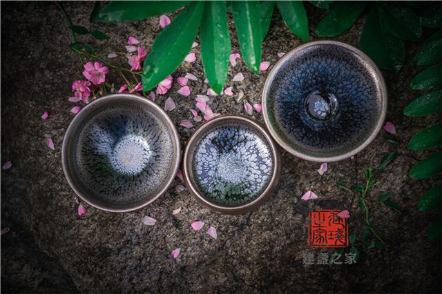 瓷器中的黑牡丹精品欣赏